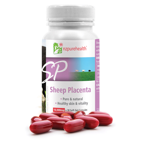 Nhau thau cừu New Zealand Sheep Placenta